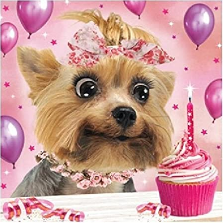 3d Holographic Yorkshire Terrier Birthday Card Square Greeting Cards