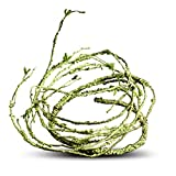 Flexible Bend-A-Branch Jungle Vines Pet Habitat Decor for Lizard ,Frogs, Snakes and More Reptiles (Thin)