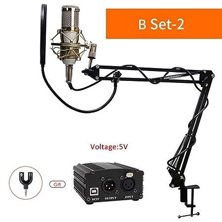 MJTCJY Micrófono de Condensador Profesional Audio Grabación de Voz ...