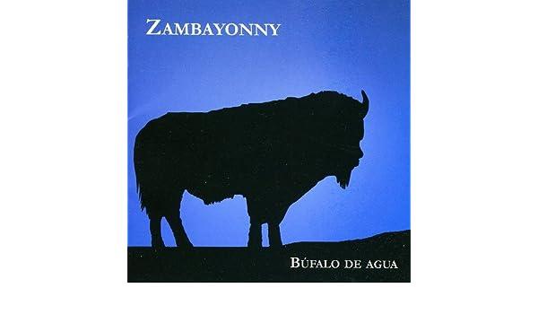 zambayonny bufalo de agua