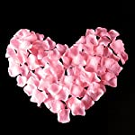 uge-4000-pcs-artificial-silk-rose-petals-carpet-flowers-bulk-for-wedding-favor-party-decoration-pink