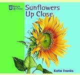 Sunflowers up Close, Katie Franks, 1404241418