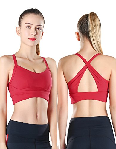8ab9a083ddef7 Exerin Women s High Impact Back Criss Cross X Style Workout Full Figure  Wirefree Running Yoga Sports