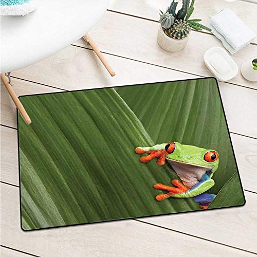 Custom&blanket Animal Front Door Mat Carpet Red Eyed Tree Frog Hiding in Exotic Macro Leaf in Costa Rica Rainforest Tropical Nature Door Mat Floor Decoration (W15.7 X L23.6 inch,Green)]()