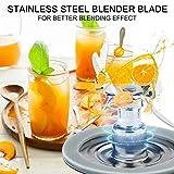 Livtor 6-Point Blender Fusion Blade 4980 & 4902