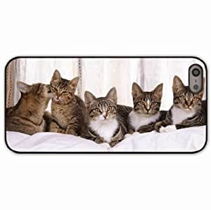 iPhone 5 5S Black Hardshell Case kittens many sitting Desin Images Protector Back Cover
