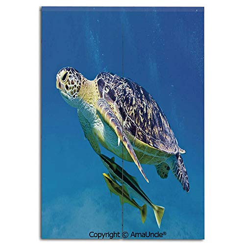 Cute Doorway Curtain Screen,Modern Room Divider Curtain,Cute Angry Looking Sea Turtle Swimming with Remora Fishes Fauna Under the Sea(31.5x47.2 Inches),Hanging Curtain for Bedroom Living Room Kitchen