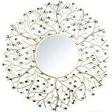 Stratton Home Decor SHD0162 Acrylic Eloise Wall Mirror