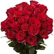 GlobalRose Red Roses - 50 Fresh Flowers - Express Delivery by Friday August 14