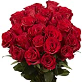 GlobalRose 50 Red Roses- Beautiful Long Stem Flowers- Unique Large Blooms