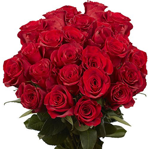 GlobalRose Fresh 50 Red Roses- Fresh Flower Delivery- Sweet Natural Red Blooms