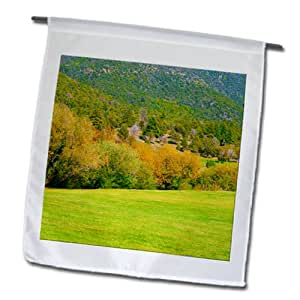 Jos Fauxtographee Pine Valley - Grass with trees and a mountain in distance - 18 x 27 inch Garden Flag (fl_99967_2)