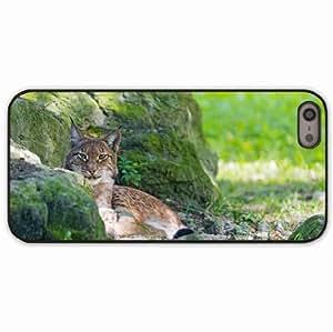 iPhone 5 5S Black Hardshell Case lynx stones moss predator Desin Images Protector Back Cover