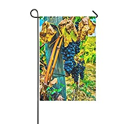 Home Decorative Outdoor Double Sided Grape Wine Grapes Vine Red Wine Wine Road Garden Flag,house Yard Flag,garden Yard Decorations,seasonal Welcome Outdoor Flag 12 X 18 Inch Spring Summer Gift