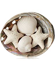 Gianna Rose Seashell Soaps in a Pearlized Shell Dish, 2.9 oz