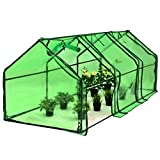 Picotech Portable Greenhouse PVC Cover Heavy Duty Power Coated Steel Pipe Green Strong Frame Stable Clear Sturdy Durable Lightweight Roll-up Door Zipper Large Easy Setup home gardeners hobby botanist