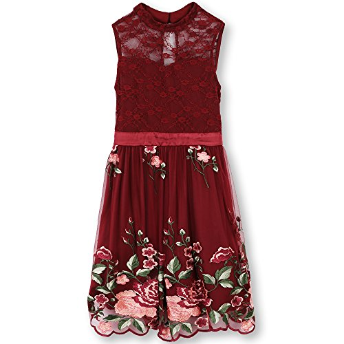 Speechless Big Girls' Illusion Neck Floral Embroidered Tulle Dress, Wine Rose, 8 by Speechless