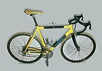 trelixx Fahrrad Wandhalter Rennrad aus Plexiglas®, Design Radhalter...