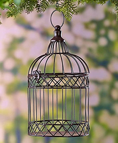 Decorative Metal Birdcages Bronze (Birdcage Decor)