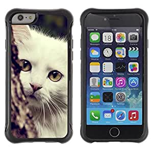 Suave TPU GEL Carcasa Funda Silicona Blando Estuche Caso de protección (para) Apple Iphone 6 PLUS 5.5 / CECELL Phone case / / Turkish Angora White Shorthair Cat /