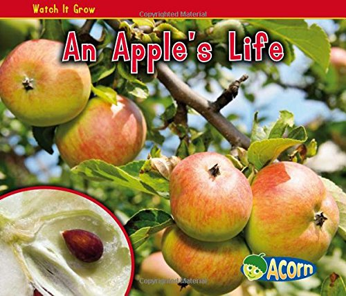An Apple's Life (Watch It Grow)