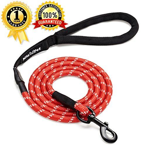 colorful dog leash - 1