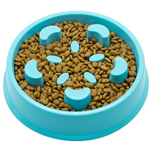 Slow Feeder Dog Bowl - Interactive Fun Slow Eating Bowl for Pets Health Bloat Stop Anti-Choking, Non-Toxic. Eco-Friendly Material