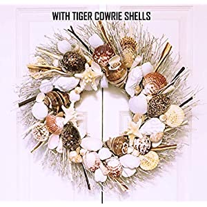 """21"""" Sea Shell Wreath on Birch Twig with Large Crown Shells in 4 Different Designs 25"""