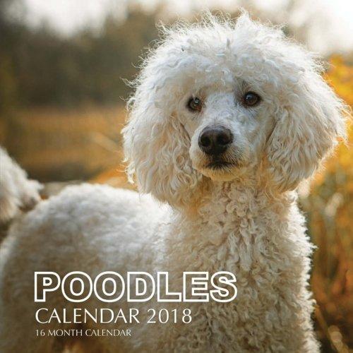 Poodles Calendar 2018: 16 Month Calendar PDF