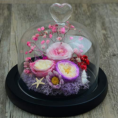 JYJSYMMG 永遠の生活 ガラスカバー プリザーブドフラワー 12x14cm ローズパープル ピンク 結婚記念日 バレンタインデー 母の友人 ギフトに最適 9648257177772 B07H5JMKRK 02 Pink