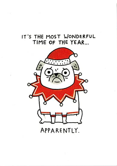 Pug Christmas Cards.Amazon Com Pug Christmas Cards The Most Wonderful Time Of The Year