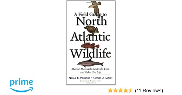 A field guide to north atlantic wildlife marine mammals seabirds a field guide to north atlantic wildlife marine mammals seabirds fish and other sea life noble s proctor patrick j lynch 0884481663547 amazon fandeluxe Choice Image