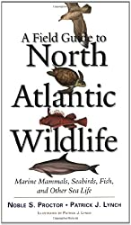 A Field Guide to North Atlantic Wildlife: Marine Mammals, Seabirds, Fish, and Other Sealife