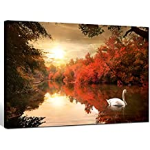 Sea Charm - Fall Wall Art Canvas Swan on The Autmn River at Sunrise Picture Printed on Canvas,Framed and Ready to Hang,Forest Landscape Giclee Artwork