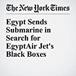 Egypt Sends Submarine in Search for EgyptAir Jet's Black Boxes | Declan Walsh