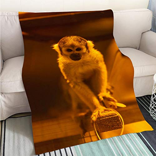 (BEICICI Luxury Super Soft Blanket Adorable Squirrel Monkey (Saimiri sciureus) Looking at You Sofa Bed or Bed 3D Printing Cool Quilt)