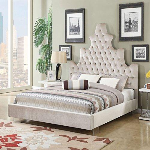 ACME Furniture 25030Q Honesty Bed, Queen, Sand Plush