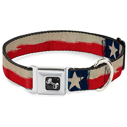 Distressed Seats (Buckle-Down Seatbelt Buckle Dog Collar - Texas Flag CLOSE-UP Distressed Painting - 1.5