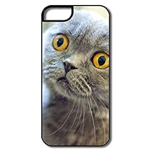 IPhone 5 Cases, Scottish Fold Cat Case For IPhone 5 5S - White/black Hard Plastic