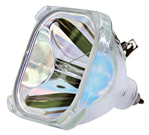 Philips OEM PHI/387 Replacement DLP Bare Bulb (RP-P022)