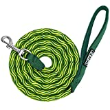 LukPaw 6 ft Dog Leash - Heavy Duty Nolyn Rope Leash with Padded Handle for Medium and Large Dogs Training Hiking Climbing Walking (Green)
