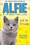 Alfie Cat in Trouble (Alfie a Friend for Life)