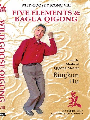 Wild Goose VIII:  Five Elements & Bagua Qigong