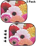MSD Car Sun Shade Protector Side Window Block Damaging UV Rays Sunlight Heat for All Vehicles, 2 Pack Image ID 28829720 Colorful Gerbera Flowers Flowers and Plants