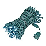 Novelty Lights 100 Light LED Christmas Mini Light Set, Outdoor Lighting Party Patio String Lights, Pure White, Green Wire, 50 Feet