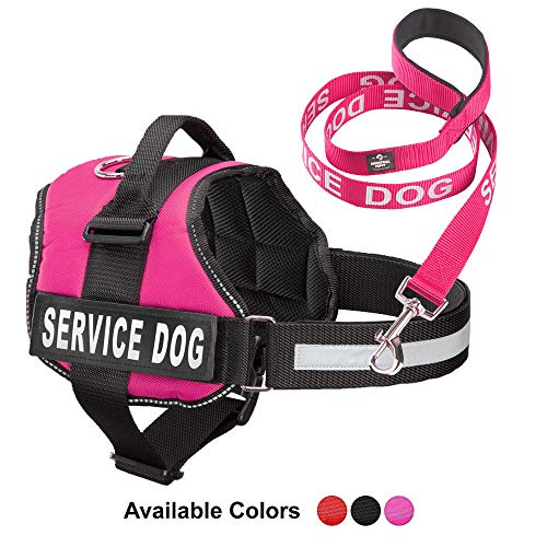 Service Dog Vest With Hook and Loop Straps & Matching Service Dog Leash Set – Harnesses From XXS to XXL – Service Dog Harness Features Reflective Patch and Comfortable Mesh Design (Pink, XL)