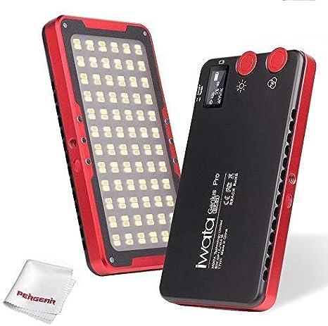 7500lux@0.3M Alto Brillo 3000-5500K Adjustable CRI97 TLCI99 Color Exacto OLED Pantalla Iwata Pro GP-01 144 LED Temperatura de Color Doble Mini luz led de Video