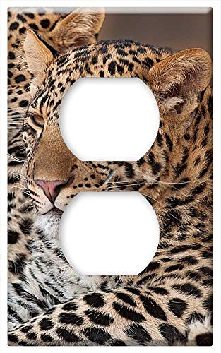 - Switch Plate Outlet Cover - Leopard Cub Rosettes Pardus Nature Africa
