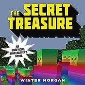 The Secret Treasure | Winter Morgan