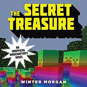 The Secret Treasure Audiobook